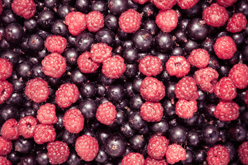 Mixed berries background with ripe delicious raspberries and blackberries