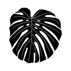 monstera leaf black and white