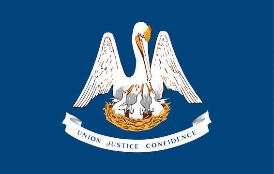 USA State Flag