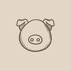 Pig head sketch icon.