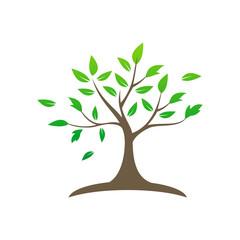 tree plant vector logo