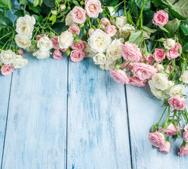 Delicate fresh roses on the blue wooden background.