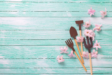 Garden tools  and tender pink flowers  on turquoise  painted woo