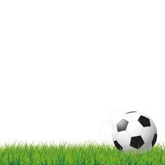 Football Grass Bokeh Green Cover