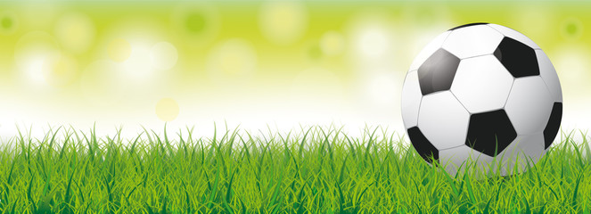 Football Grass Bokeh Green Header