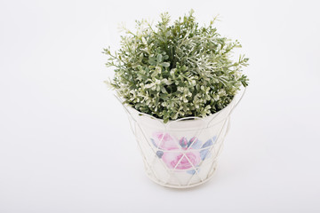 Homemade potted plant with patterns