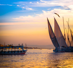 Papiers peints Egypte Feluccas at sunset - traditional sail vessel on Nile river in Egypt.