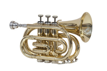 classical wind musical instrument cornet isolated on white background Wall mural
