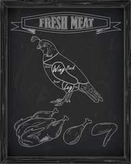 beautiful fresh quail and meat
