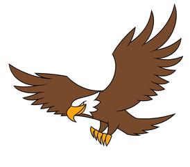 Flying eagle illustration