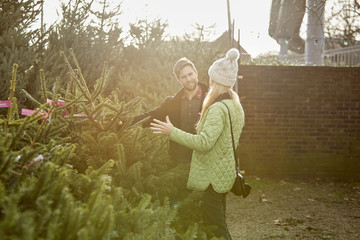 A man and woman choosing a traditional pine tree, Christmas tree from a large selection at a garden centre.