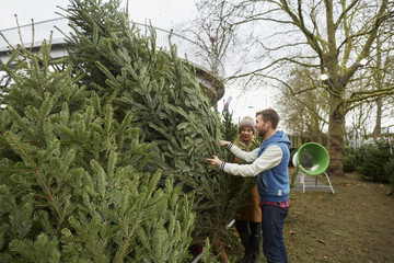 A woman in a garden centre choosing a traditional pine tree, Christmas tree.