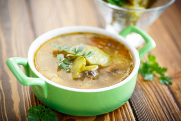 soup with pickled cucumbers on the plate