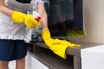 Maid cleaning a television cabinet