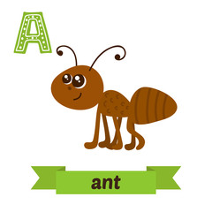 Ant. A letter. Cute children animal alphabet in vector. Funny ca