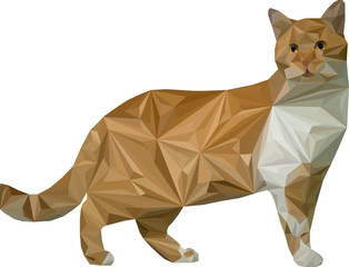 cat triangle vector