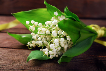Photo sur Plexiglas Muguet de mai bunch of lily of the valley