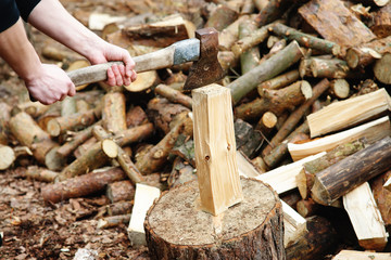 Man chopping logs in garden