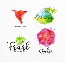 Beauty natural spa symbols bird