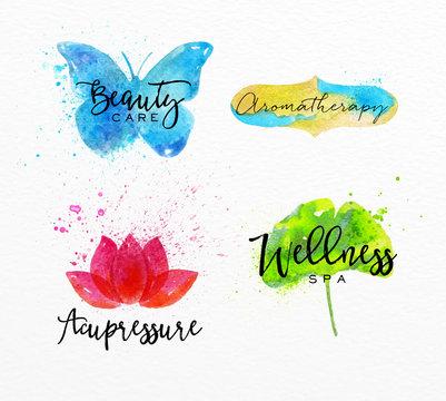 Beauty natural spa symbols butterfly