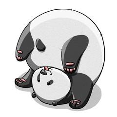 funny cartoon cute fat panda bear illustration