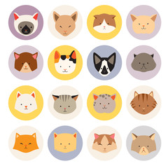 Set of cute cats flat icons, vector flat illustrations. Cat breeds, pattern, card, game graphics, web userpic.