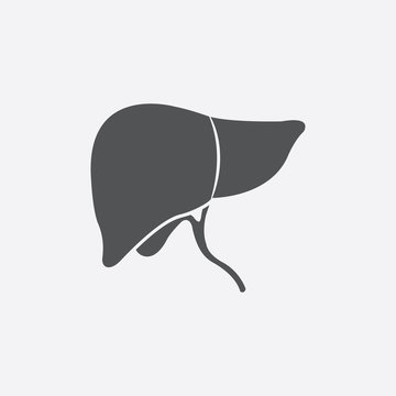 Liver icon of vector illustration for web and mobile