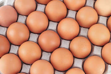 close up Eggs pattern background