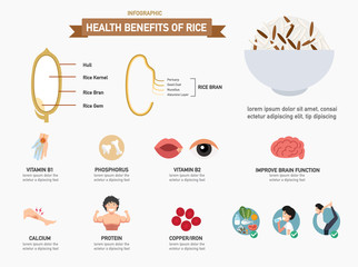 Health benefits of rice infographics.vector
