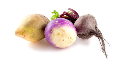 Different types of bulbous taproot vegetables isolated on white