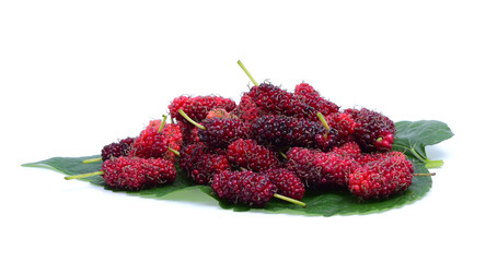 Fresh Mulberry and  leaf isolated on white background.