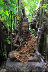 Hindu God Vishnu under the tree