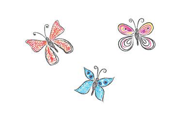 butterfly, sketch, vector illustration