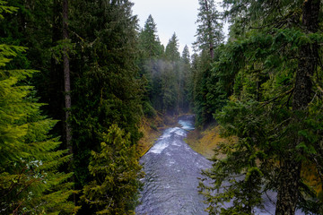 McKenzie River in Oregon