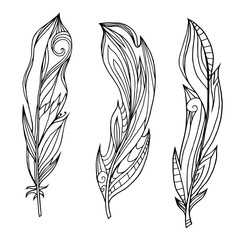Set of hand drawn feathers with boho pattern. Tribal doodle elements. Vector element for your creativity.