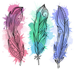 Set of hand drawn feathers with boho pattern and watercolor splashes. Tribal doodle elements. Vector element for your creativity.