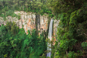 Purling brook Falls at Springbrook National Park in Queensland.