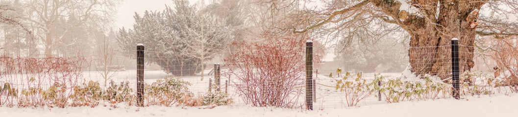 Garden with a fence at wintertime