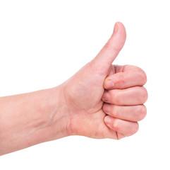 Adult female hand