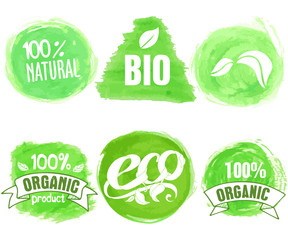 Vector natural, organic food, bio, eco labels on white background