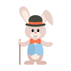 bunny with hat