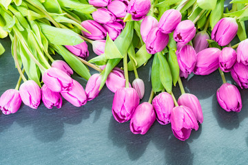 Anniversary pink tulip flowers flat lay on grey background