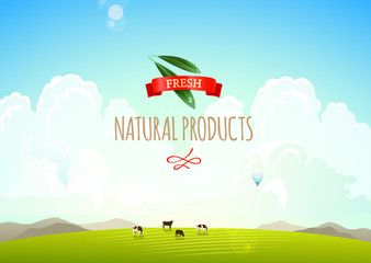 Nature landscape illustration with mountains, hills and clouds. Cows on a green meadow. Concept of fresh, natural products