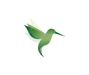 hummingbird photos royalty free images graphics vectors videos