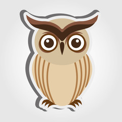 owl bird design