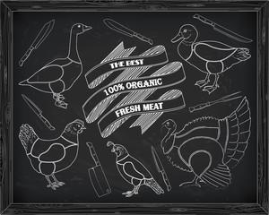 beautiful scheme cutting chicken turkey duck goose quail
