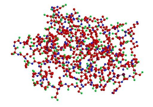 Molecular structure of hormone leptin