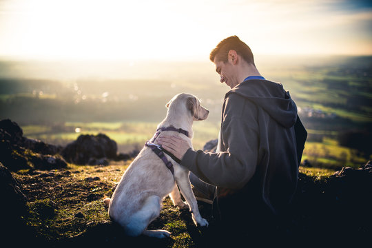 Dog and man in landscape