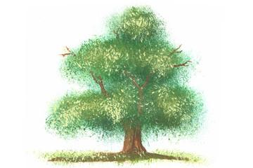 Kleine Malerei Deckfarben Fantasie Baum auf Weiß