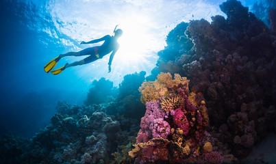 Foto op Canvas Duiken Free divers